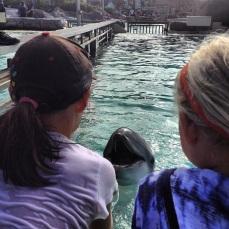 Crianças e golfinhos se comunicando