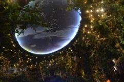 DSCTeto do Rainforest- Foto By ClauGrunow_0221