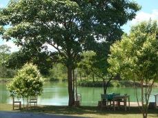 Lagoa em frente ao parque - Photo by ClauGrunow