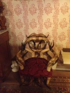 Cadeira toda de Chifres