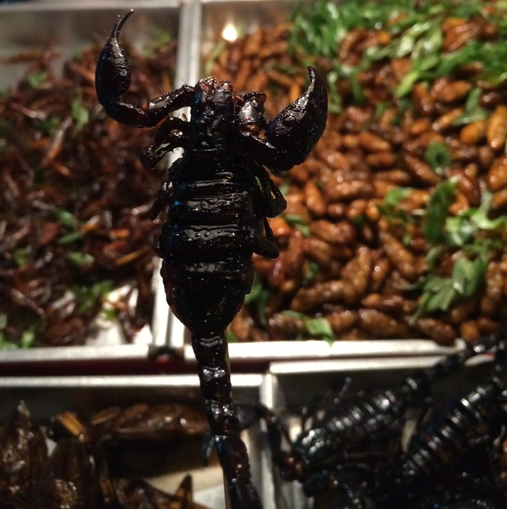 Escorpião vendido em Bangkok
