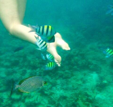 Pernas em águas claras de Koh Phi Phi -Photo by Claudia Grunow